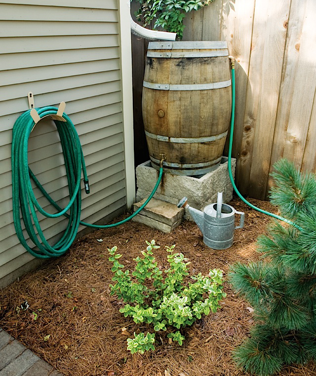 Rain Barrel, Both in form and function. Photo by John Wiese Photography