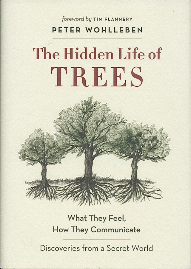 hidden-life-of-trees