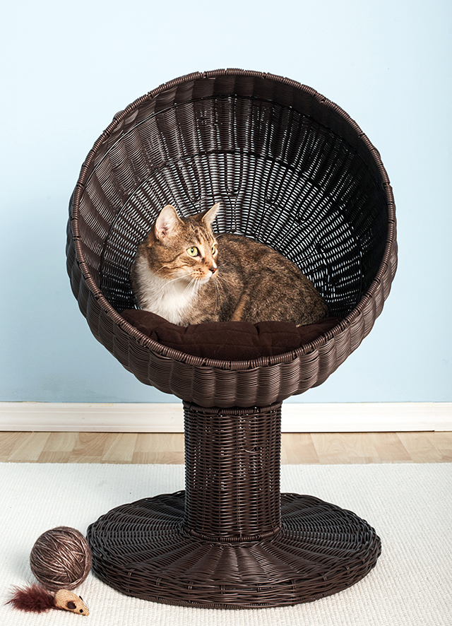 kitty-ball-bed