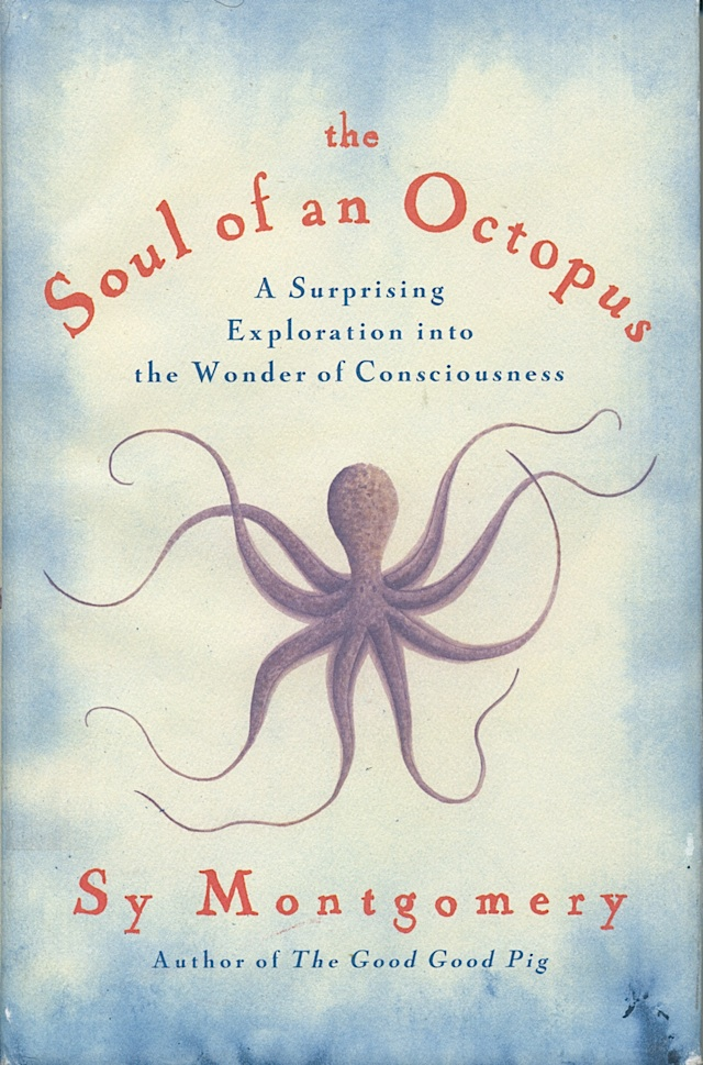 soul-of-an-octopus-1