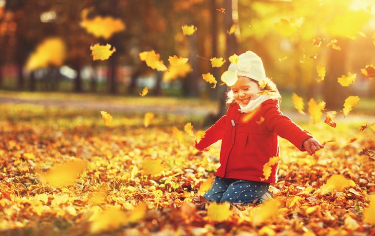 La vie d'automne