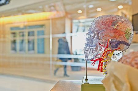 New hampshire brain injury lawyer