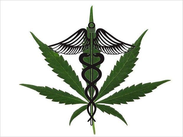 Medical marijuana compressor