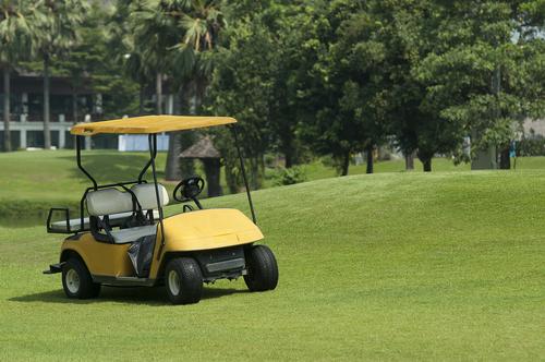 Golf 20cart