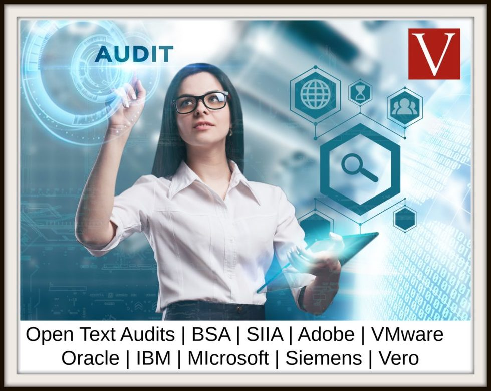 Open text software audit 1024x815