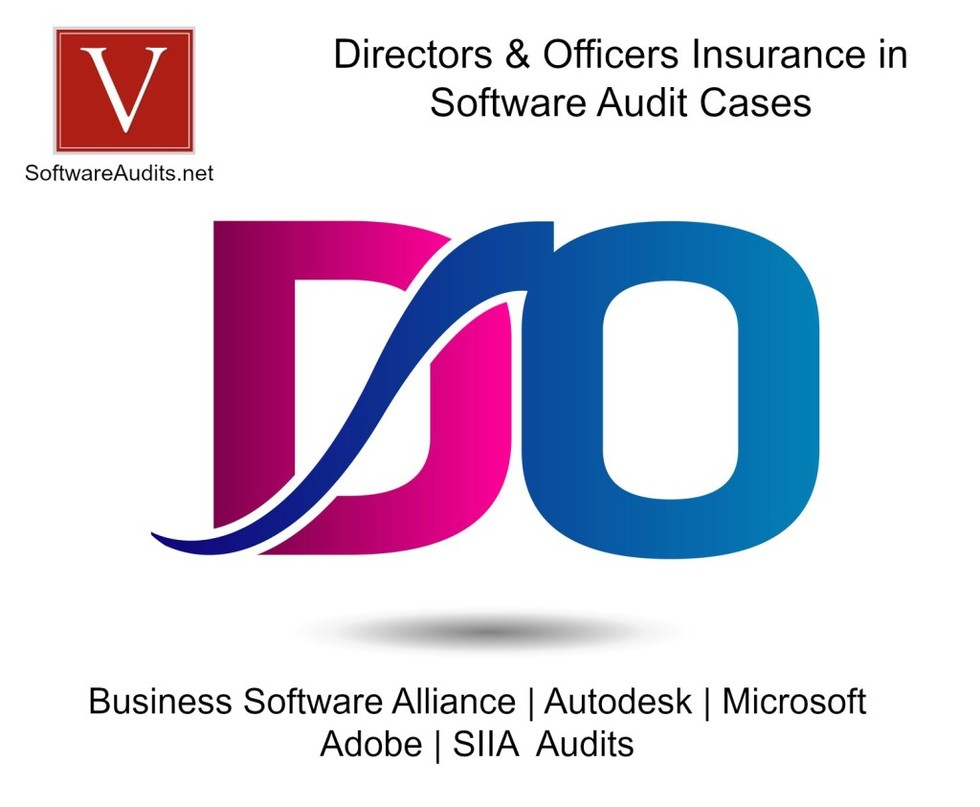 D o insurance software audits 1024x843