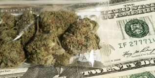 pot and money