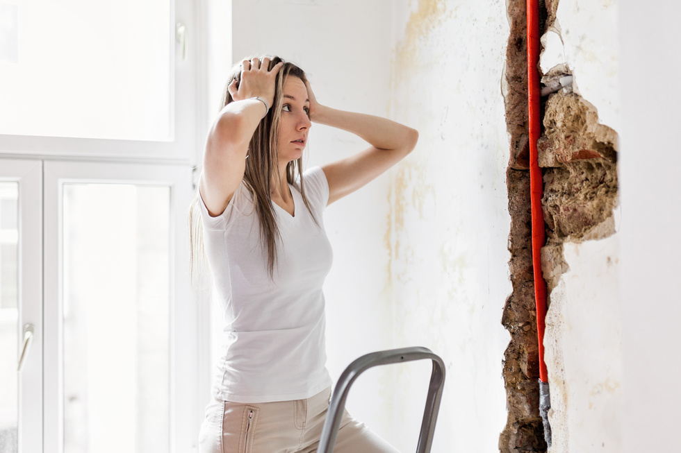 Mold damage attorneys
