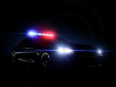 28002 policecar light optimized