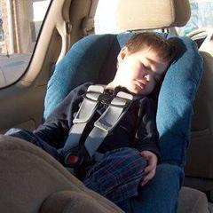 Car_20seat-optimized