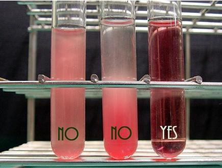 good and contaminated vials of blood (light pink, dark pink and red)
