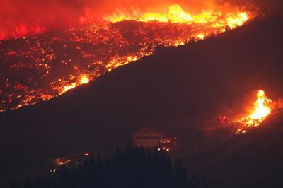 wildfire raging in a hillside