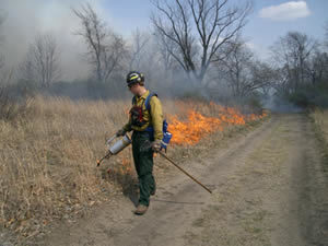 professional conducting a controlled burn of a field