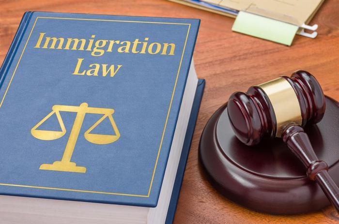 Immigration 20book 20gavel