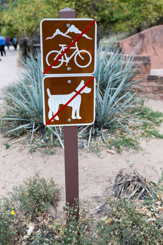 sign showing no bicycle and no dogs allowed
