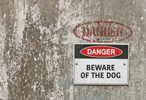 "signing on wall reading ""Danger, Beware of the Dog"""