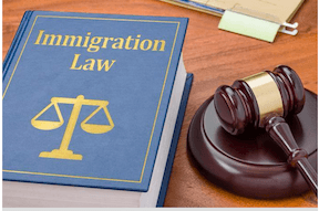 Immigration_20book_20gavel