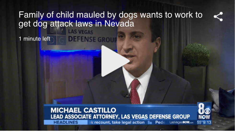 Attorney Michael Castillo discussing animal mauling.