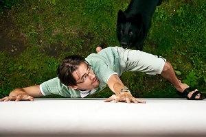 dog chasing a man up a wall