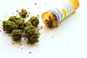 prescription bottle with marijuana buds pouring out of it