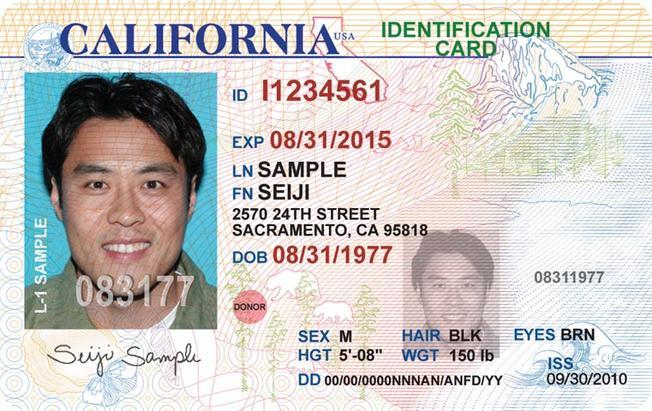 Example of a California Driver's License