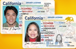 Two California driver's licenses – one with photo of a young man, one with a woman