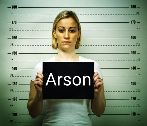 female mugshot for arson