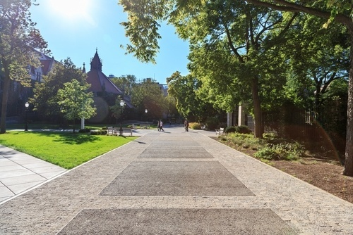 Walkway at a college campus; victims of sexual assault on campus may be able to bring a claim under Title IX.