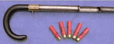Img cane gun