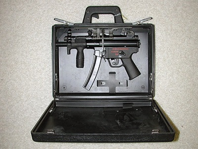 Img-camouflaging-firearm-container