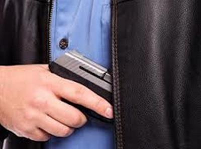 Img concealed gun