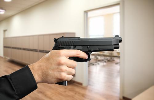 gun in school