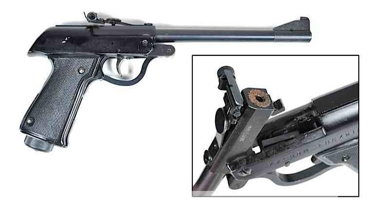 Img-pellet-gun