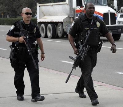 Img-police-rifle-gun