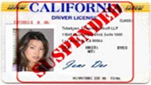 Img-second-dui-suspension