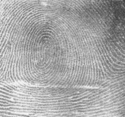 Img-fingerprint