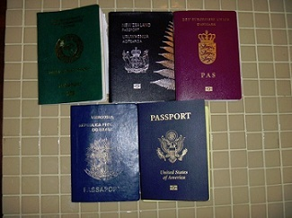 Img-federal-citizenship