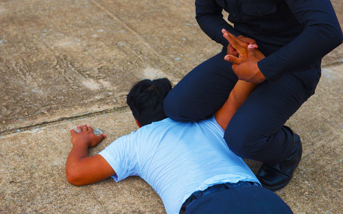 man on ground subdued by a police officer; it is a crime to use force to resist an executive officer