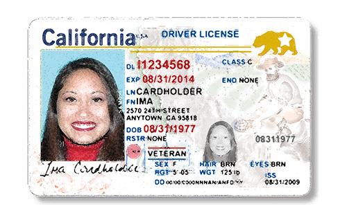 dmv california driver's license