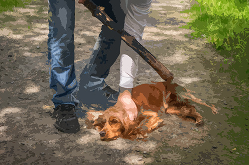 man striking a dog with a wooden stick as an example of animal abuse