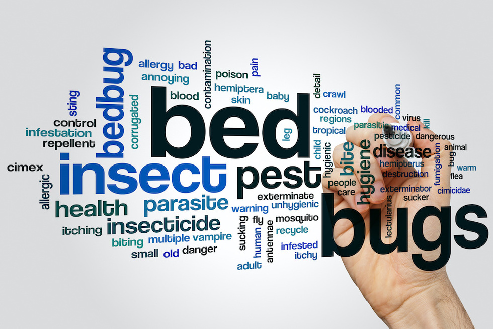 Bedbug Lawsuits Moet Ontario