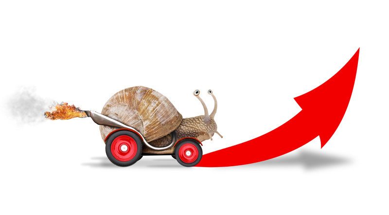 Speed up snail