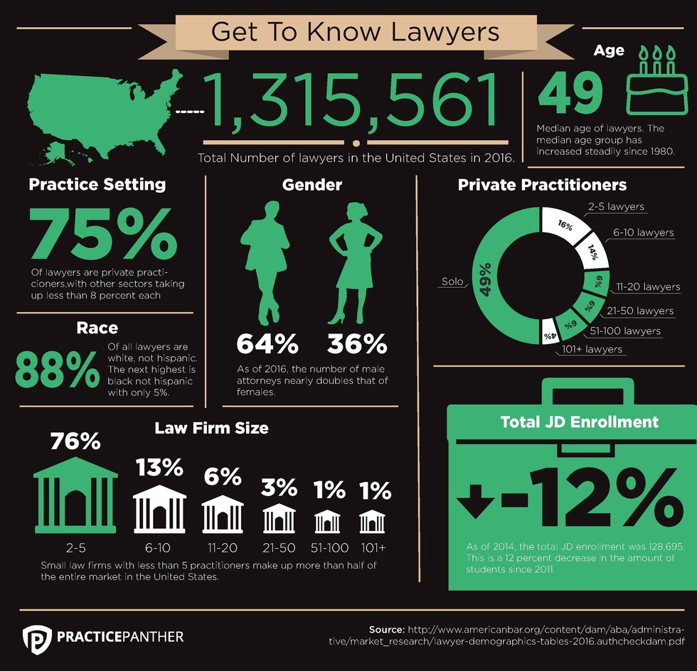 Lawyer Demographics Infographic