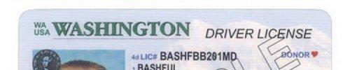License snapshot wa