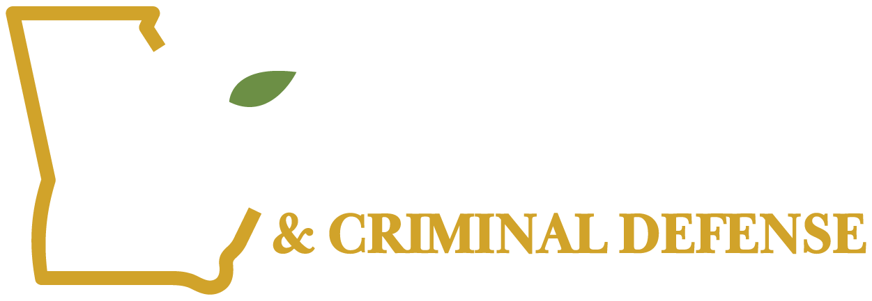 Georgia DUI and Criminal Defense, Inc.