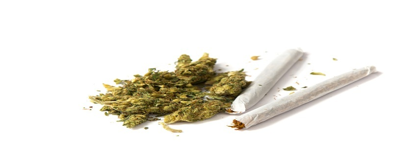 Marijuana 20cigarette