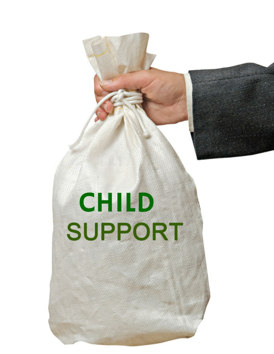 Child 20support 20bag