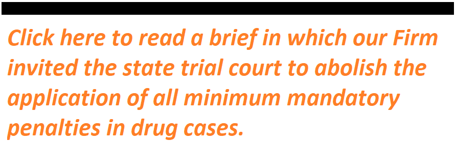 Click here to read a brief in which our Firm invited the state trial court to abolish the application of all minimum mandatory penalties in drug cases.