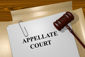 Criminal Appeals Attorney in Los Angeles