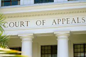 People v. Leonard Lejohn Gonzalez, appellate case number B297509